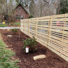 Privacy fence with azaleas and dogwood accents