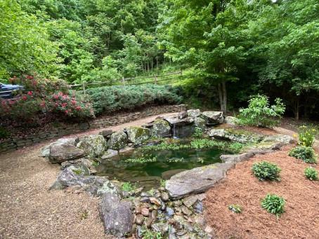 Pea gravel pathway and plantings around Koi Pond