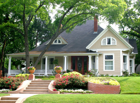 How Trees Can Maximize The Value Of Property