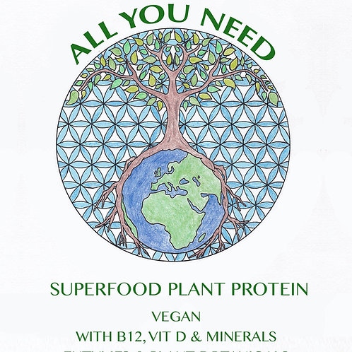 All You Need Superfood Protein Mix