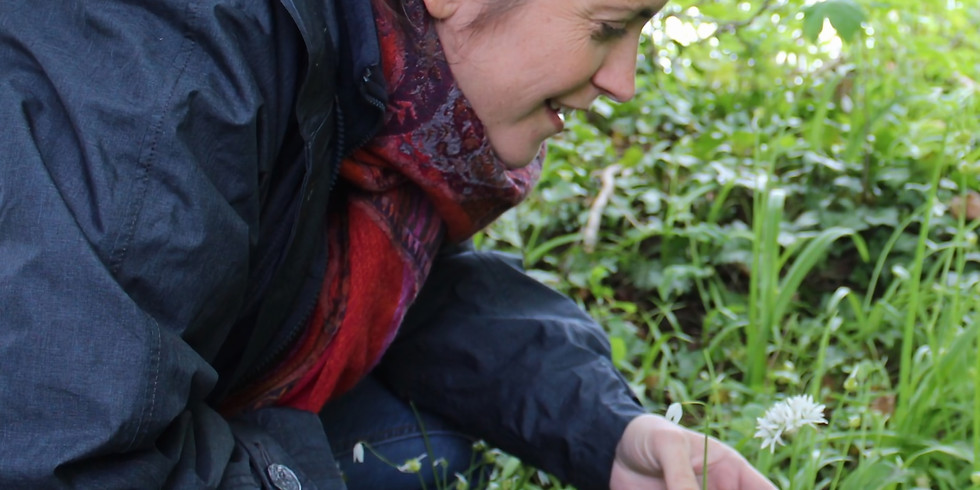 Foraging Walk and Superfood Lunch