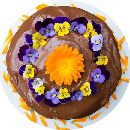 Indulgent Healthy Chocolate Cake