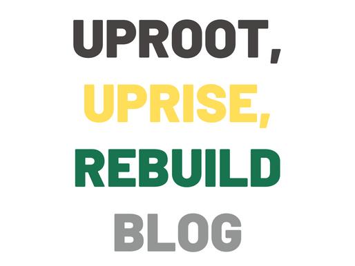 UpRoot, UpRise, ReBuild - CFHE's New Blog