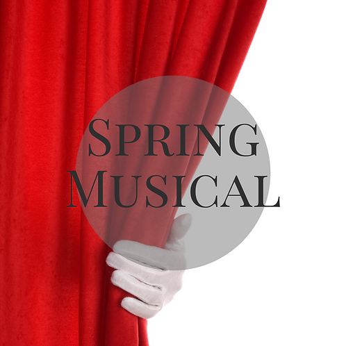 Spring Musical Company Performer