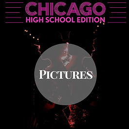 Chicago pictures.png