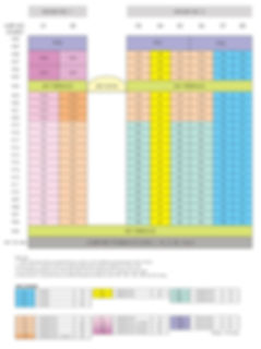 Schematic Diagram-Lincoln Suites.jpg