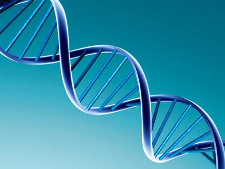 Генетическая экспертиза. Судебное установление отцовства.
