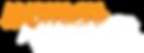 WIDJET logo_web.png
