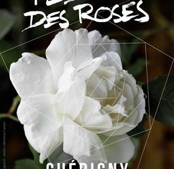 Festival des roses de Chédigny 2016