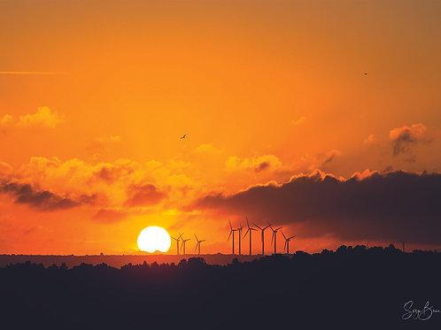 Eoliennes au coucher du soleil
