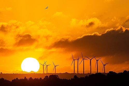 Panoramique Eoliennes au coucher du soleil