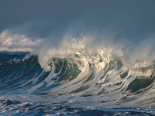 La VAGUE, the WAVE
