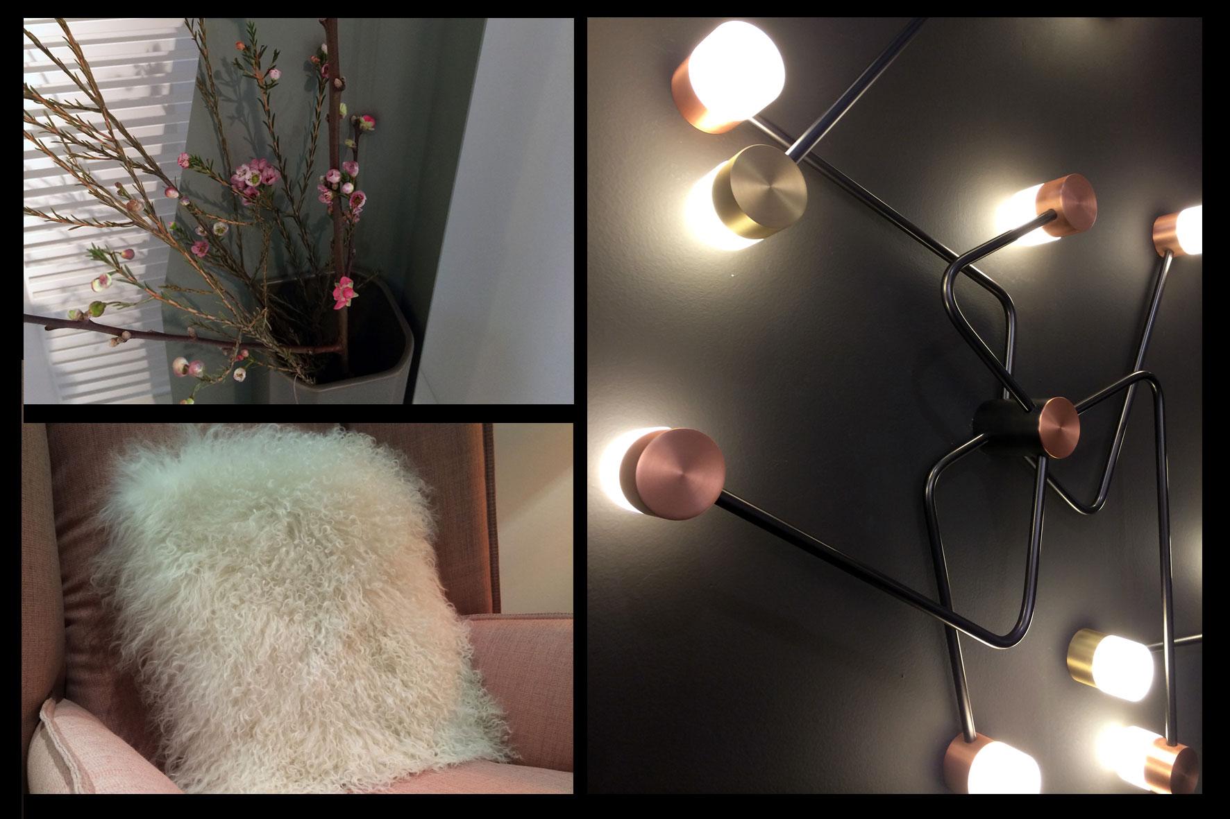 Décoration d'intérieur - Pink Lady