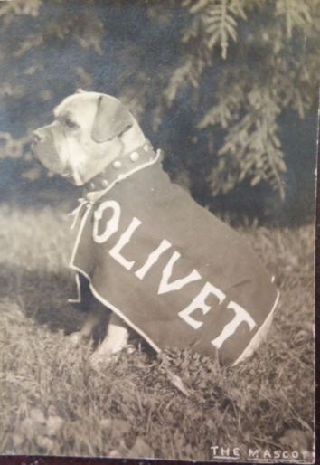Jack the Dog wears his Olivet gear to a sporting event,  1906.
