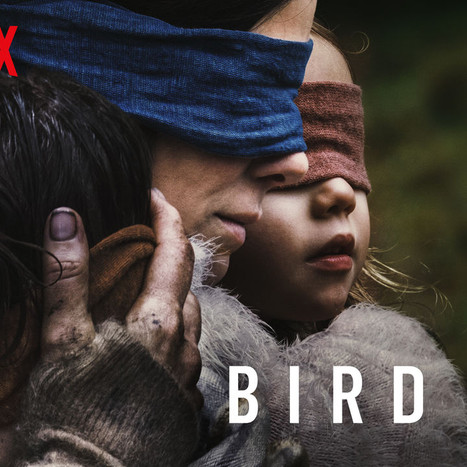 Netflix Original 'Bird Box' More Than Satisfactory