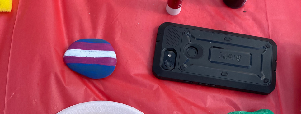 Trans Day of Visibility Rock Painting