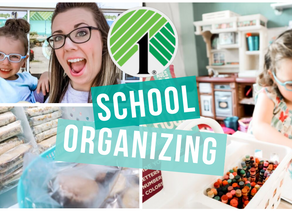 DOLLAR TREE ORGANIZING IDEAS FOR SCHOOL