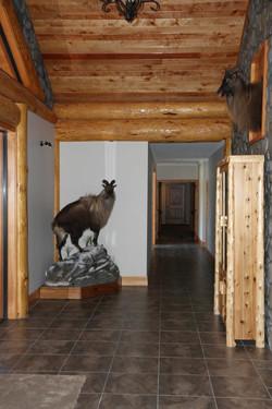 Tahr in Lodge