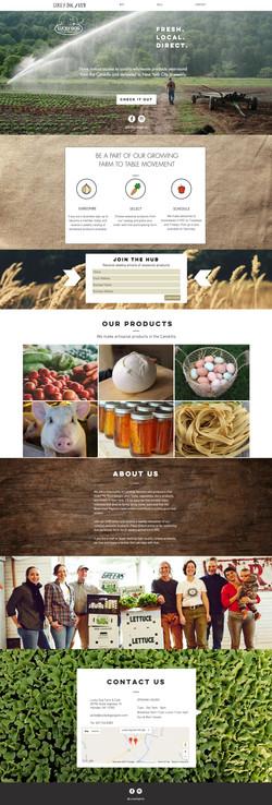Lucky Dog Website Design