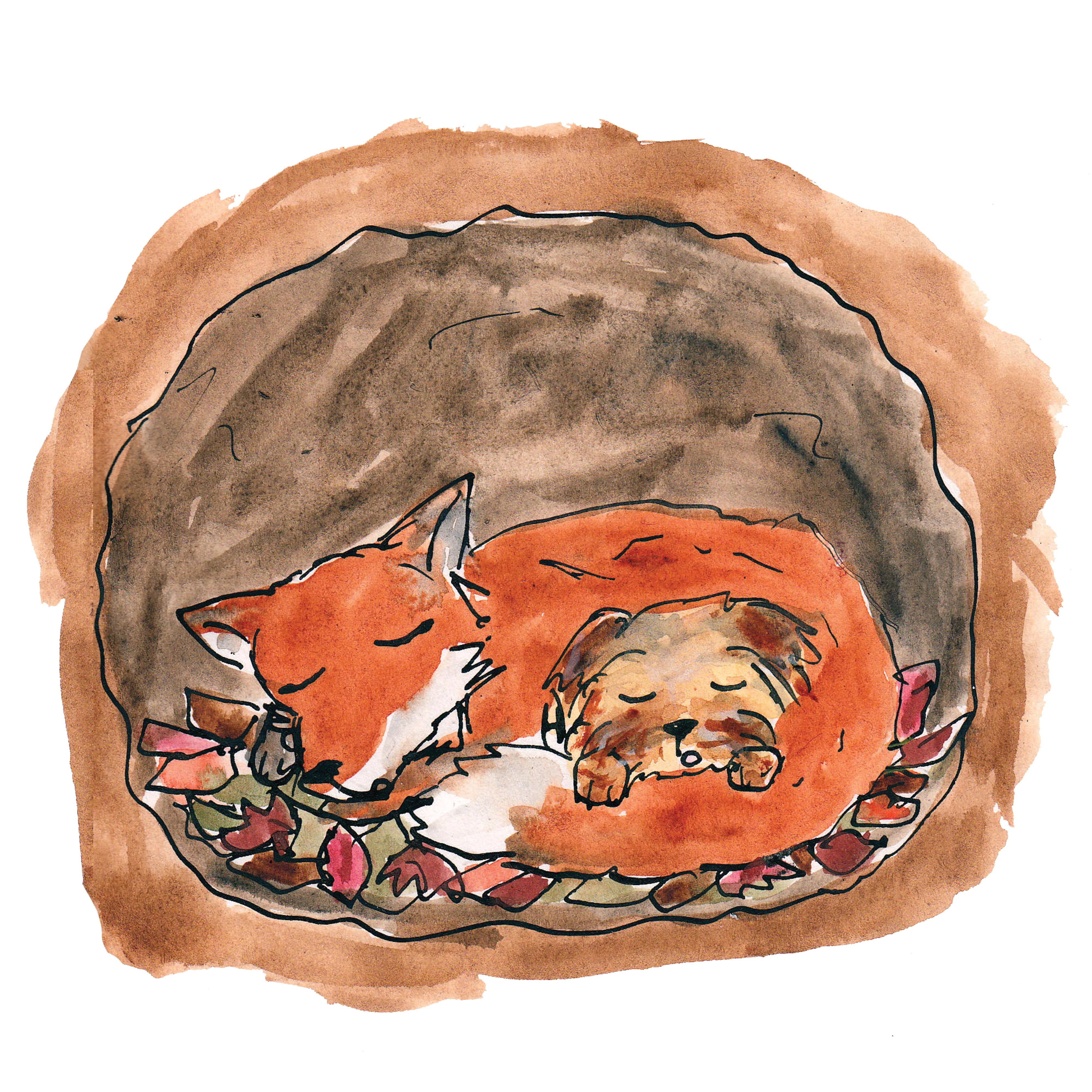 10 fox den high res