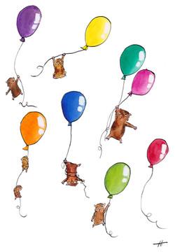 balloonsweb.jpg