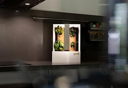 boombi kitchen.jpg