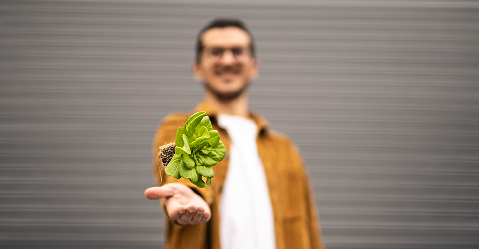 man-with-salanova-lettuce-in-hand.png