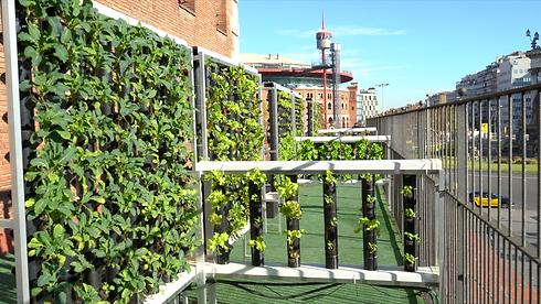 El huerto vertical Groots instalado en el patio del Colegio Francesc Macià de Barcelona.