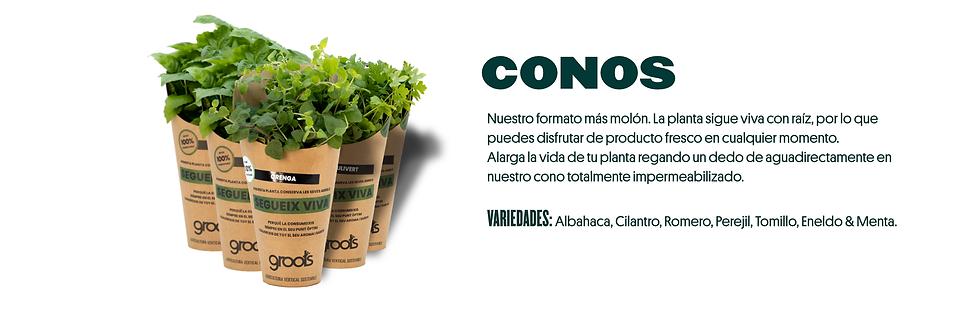banner productos cono.png