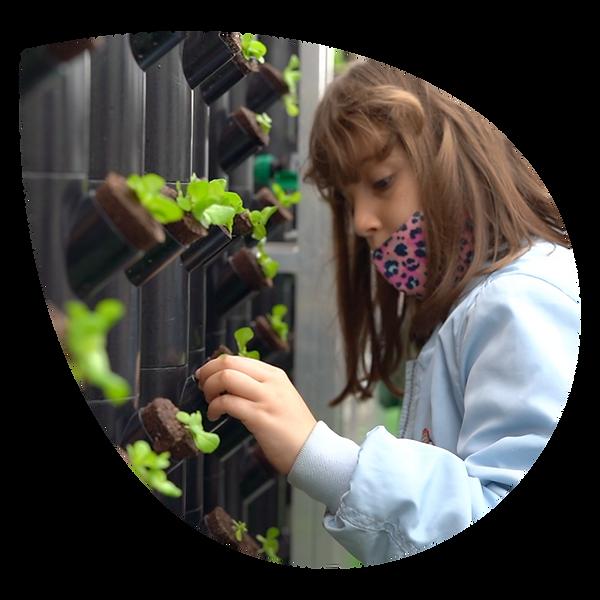 niña estudiante de primaria en el huerto vertical del colegio en plaza España