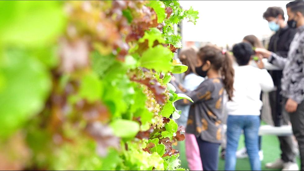 Estudiante de 3º de primariaen un huerto urbano.