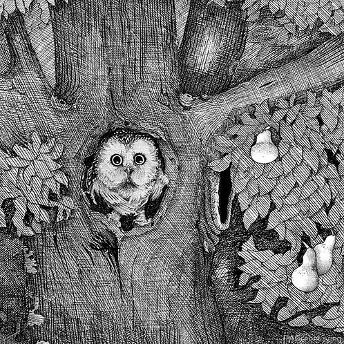 Print of The Owl - by Damian Nelthorpe