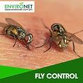 FLY-CONTROL-300x300.jpg