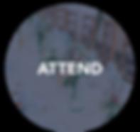 Asset 46_300x.png