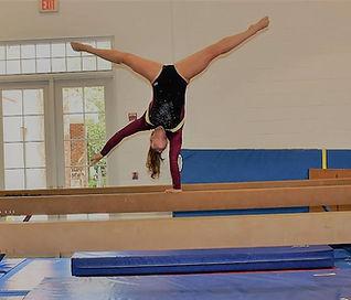 Summit High School Gymnist