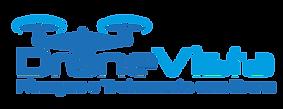 Logo Drone Vista