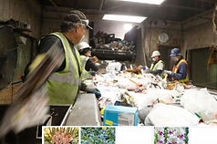 recycling facility flagstaff.png