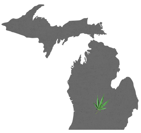 State of Michigan silhouette with leaf over Lansing