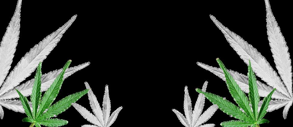 leaf-bg-3a.png