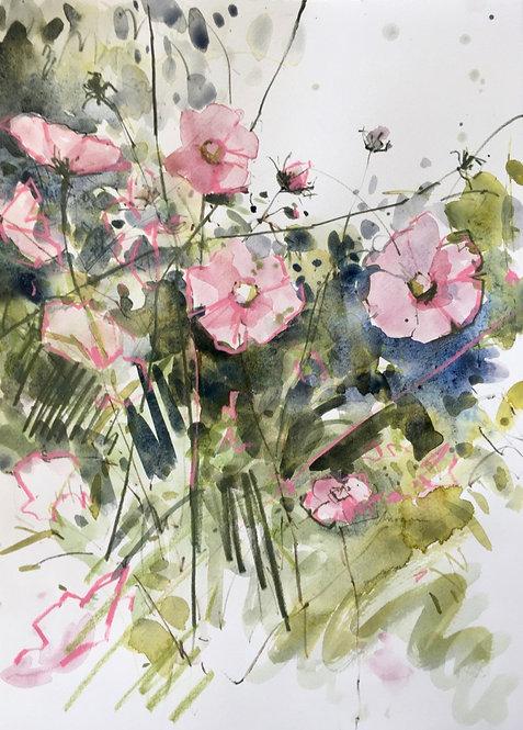 Garden Sketch- £425