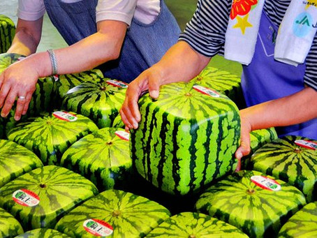 Una compañía turca produce frutas y hortalizas con la forma deseada