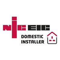 NICE logo.jpg