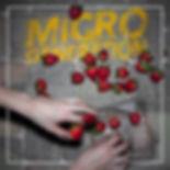 fa micro 1.jpg