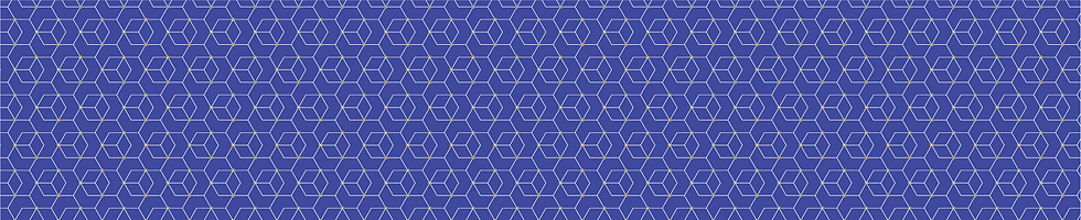 Master_Pattern_HEX_980X200-blue.png