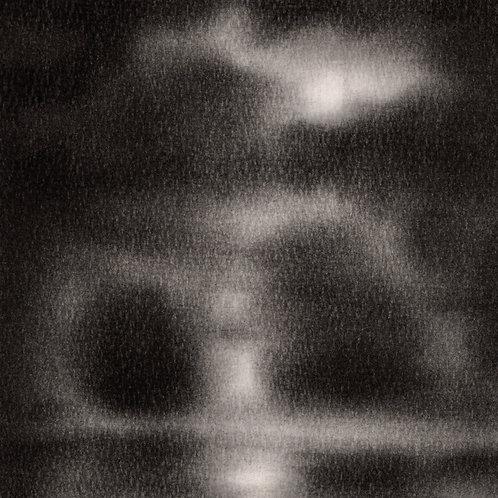 Young Trees II - Sokquon Tran
