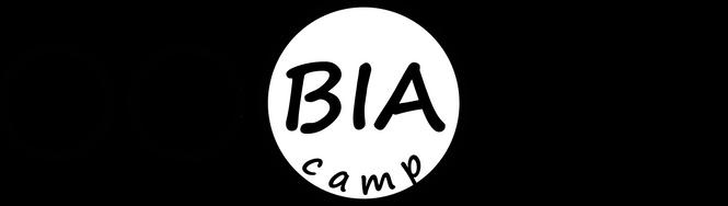bitmap1.png