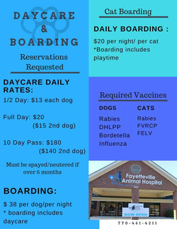 Boarding and DayCare Information