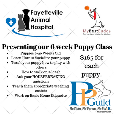 Presenting our January Puppy Class.png