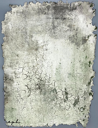 Bayeux V