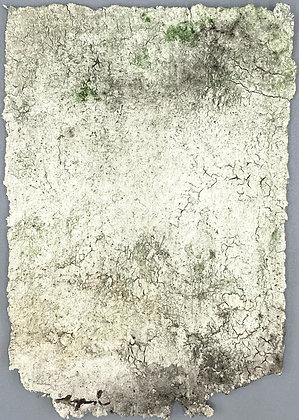 Bayeux II